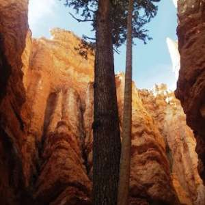 April-1-06-bryce-canyon-055