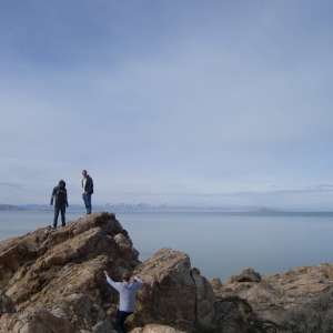 antelope-island-purple-004